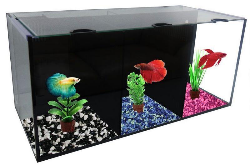 Seaview aquarium centre aqua one betta villa tank for Betta fish store