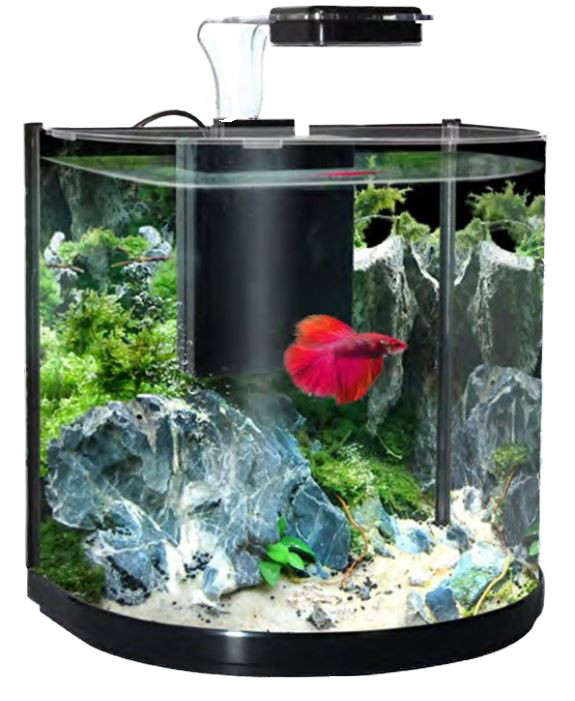 Seaview Aquarium Centre Aquamanta Bt 10 Betta Aquarium