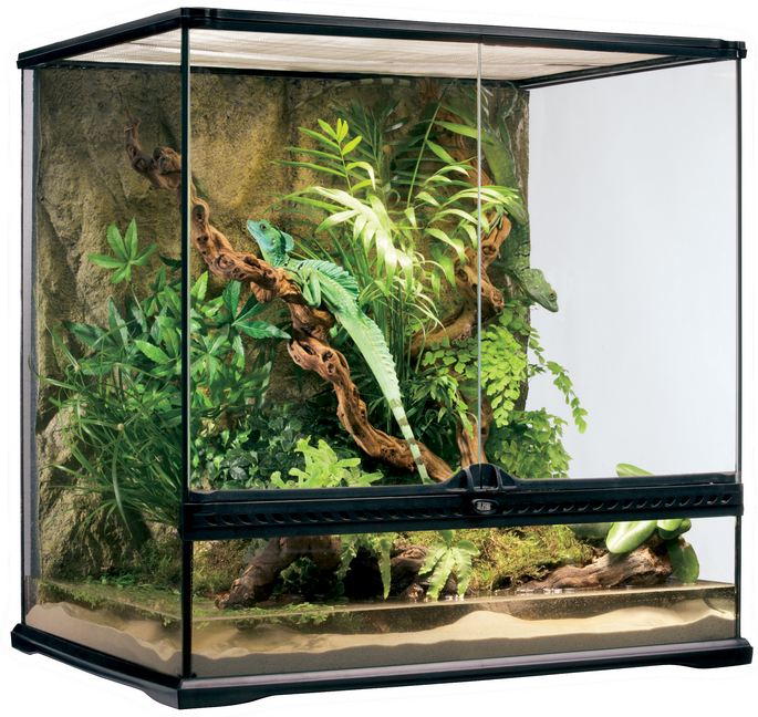 Seaview Aquarium Centre Exo Terra Medium Tall Natural Glass Terrarium