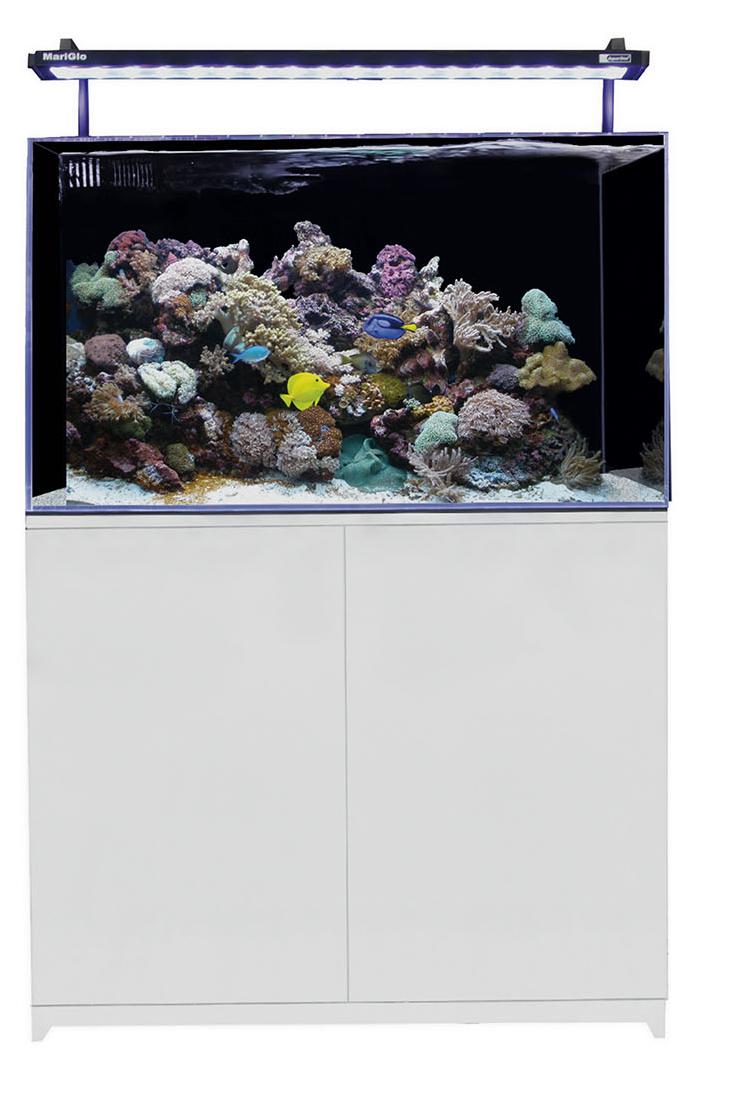 Seaview Aquarium Centre Aqua One Mini Reef 160